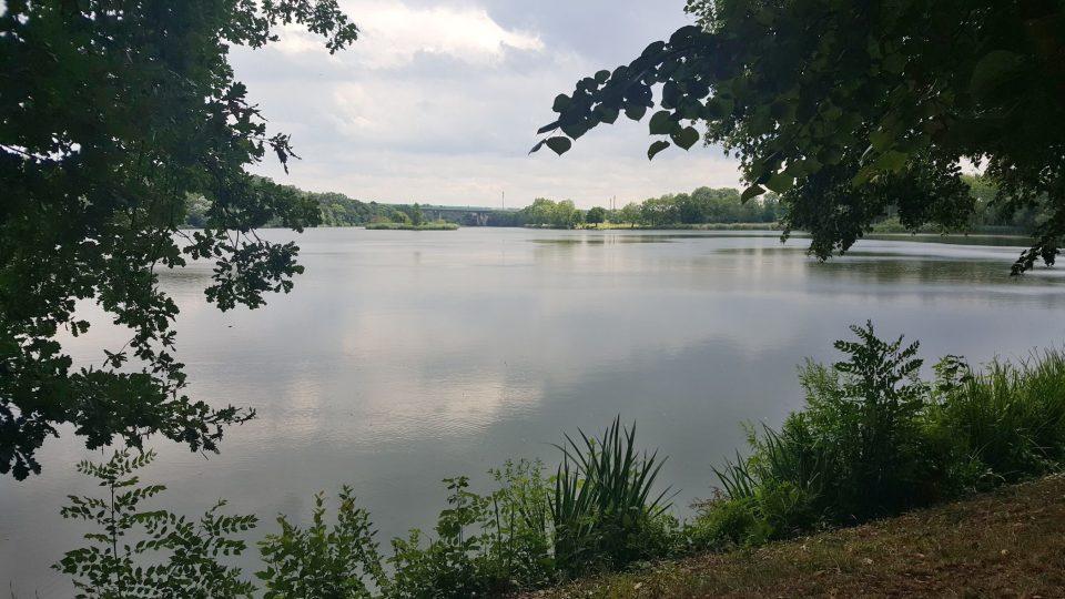 Počernický rybník byl přírodní památkou vyhlášen v roce 1988